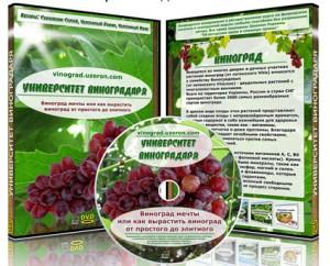Университет_виноградаря
