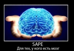 Sape–покупка_и_продажа_ссылок